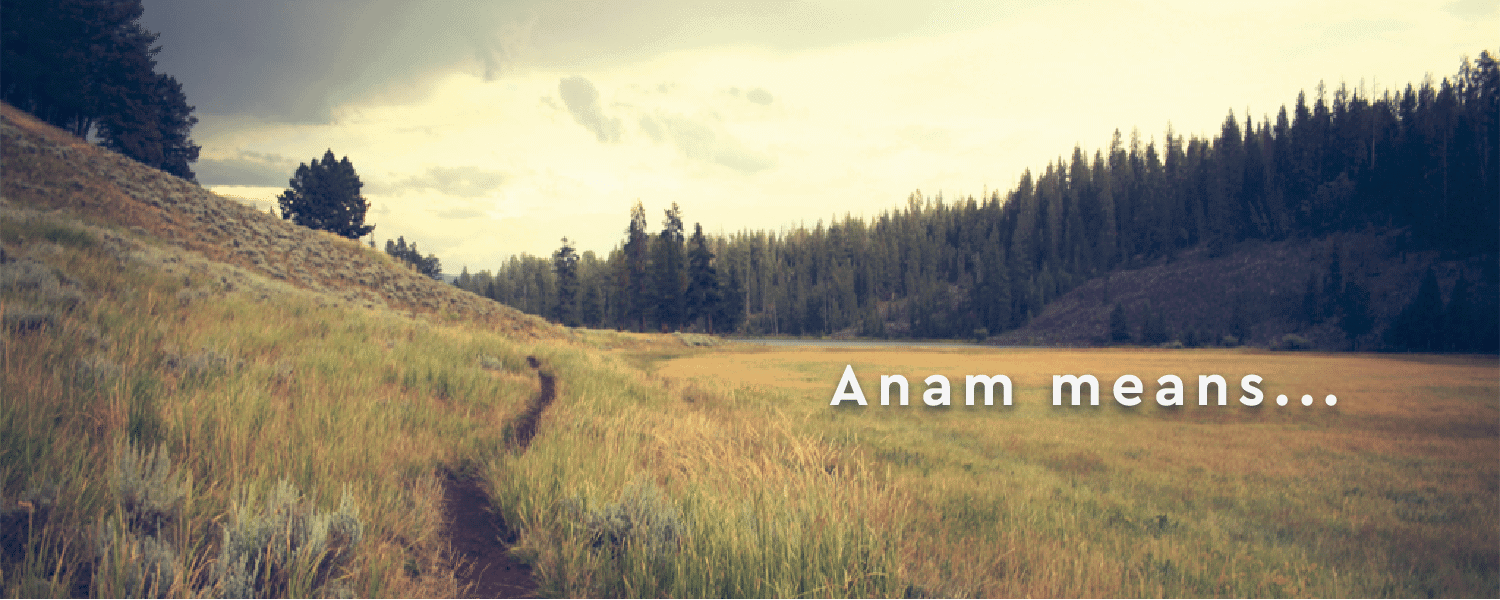 AnamBliss Meaning-01